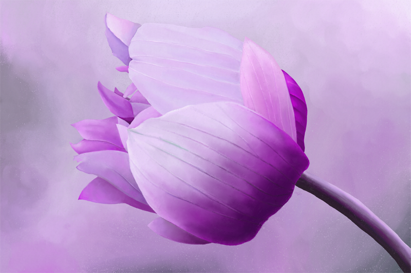 Digitaal pastelkrijt tekening van een anemoon bloem in roze en paars