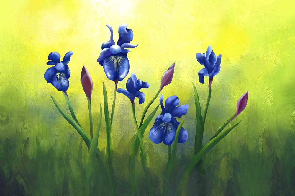 Digitaal acrylschilderij van paarse lissen op een zonovergoten dat