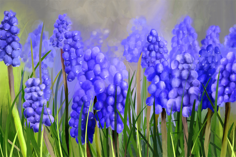 Digitaal schilderij van blauw-paarse Druifjes