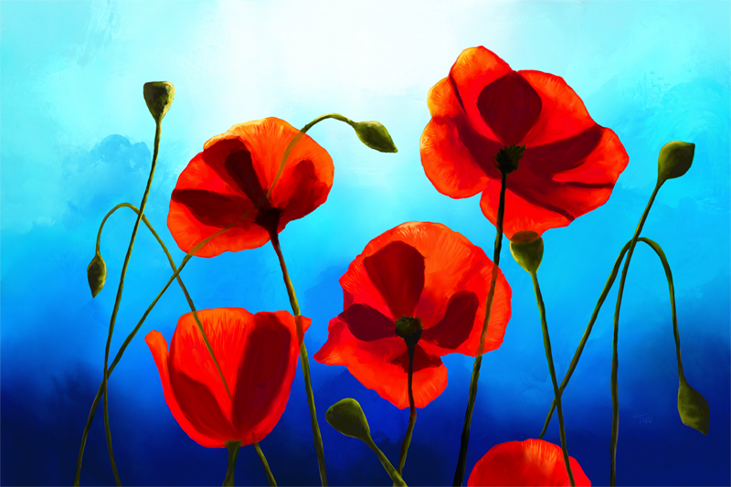 Digital painting of red poppies with a blue sky in the back