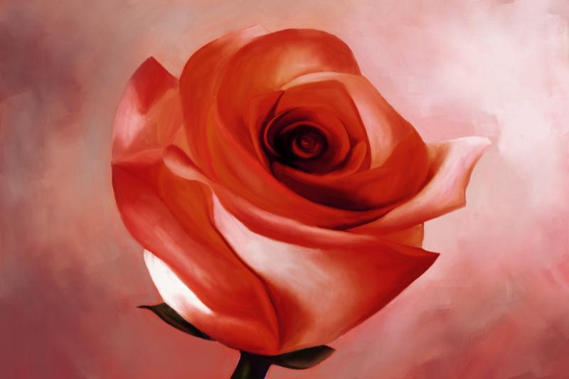 Digitaal acrylschilderij van een rode roos
