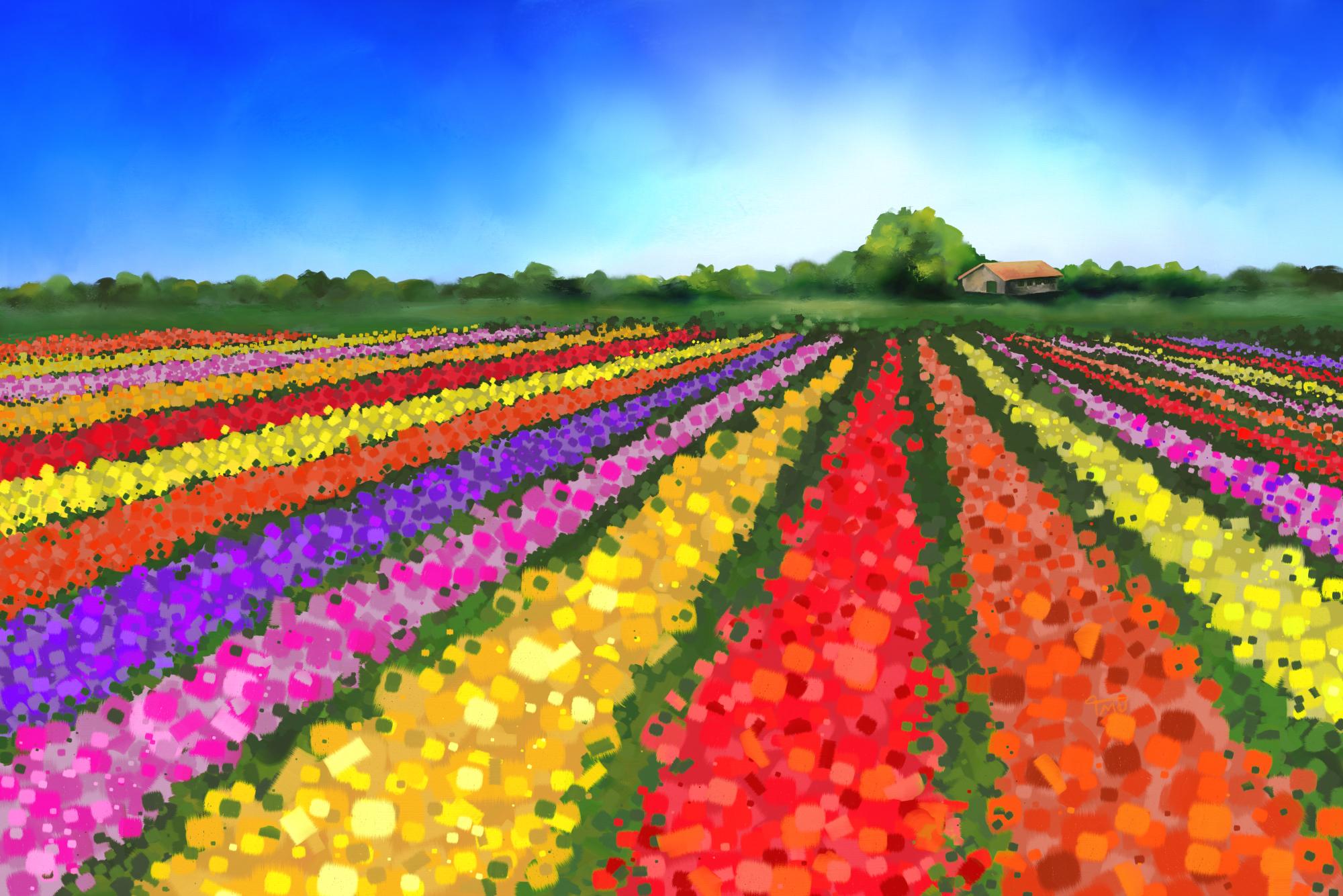 Digital acrylic painting Dutch Tulip Fields with Farm House