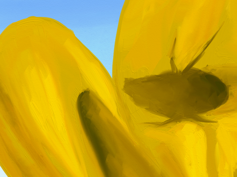 Yellow Buttercup flower painting