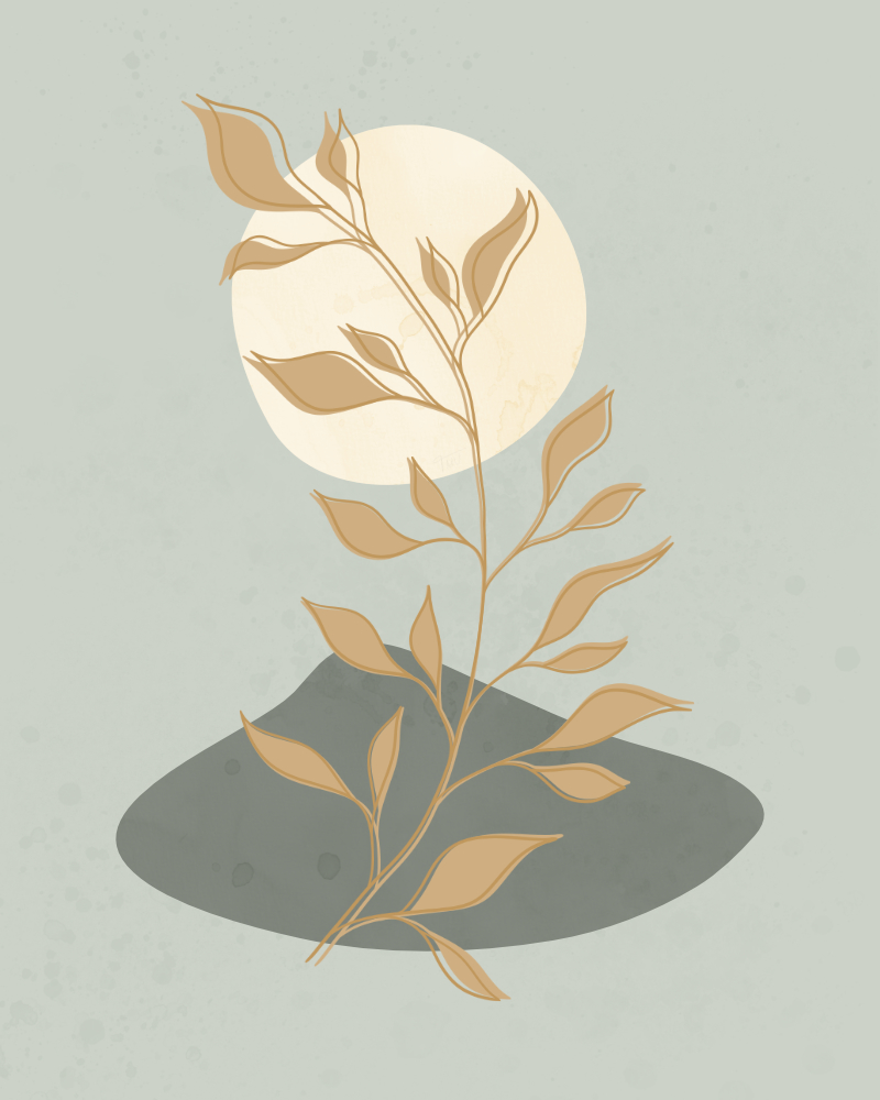 Minimalist landscape with a leafy plant 12