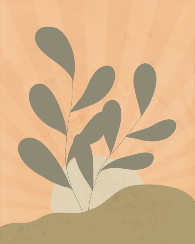 Minimalist landscape with a leafy plant 15
